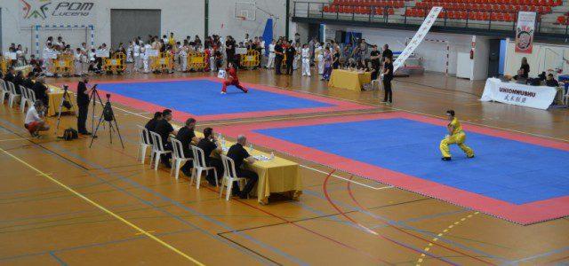 Celebración del Campeonato de Artes Marciales Chinas en Lucena