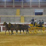 Exhibición Ecuestre organizada por la Asociación Los Cabales