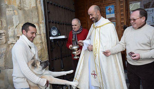 Las mascotas lucentinas son bendecidas por San Antón