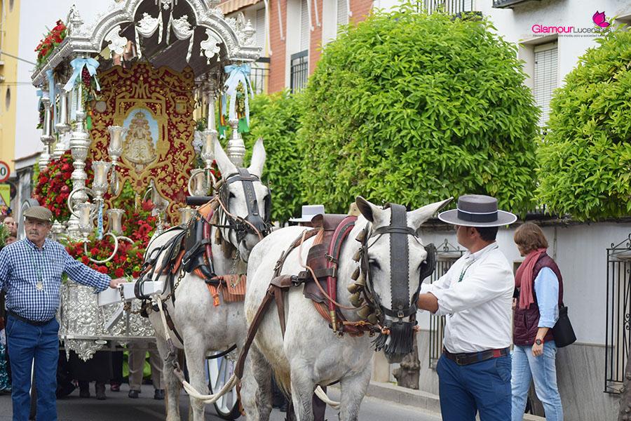 Los romeros de Lucena comienzan su camio hacia el Rocio