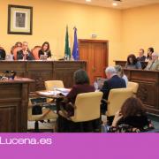 Aprobados en Pleno los nuevos convenios de colaboración con la Peña Amigos de los Magos, la Agrupación de Cofradías y Alufi