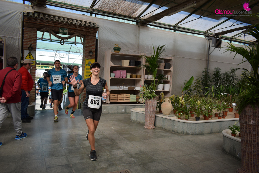 maraton 46