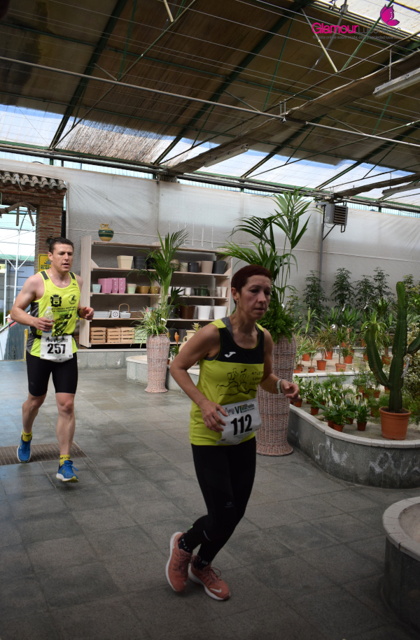 maraton 49