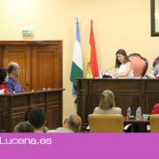El Pleno anula la autorización de actividad al mercadillo privado de los domingos