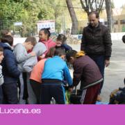 1.500 escolares participan en la campaña municipal 'Conocemos nuestros árboles'