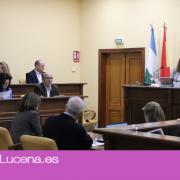 Aprobada la ordenanza municipal reguladora de los mercadillos en suelo privado