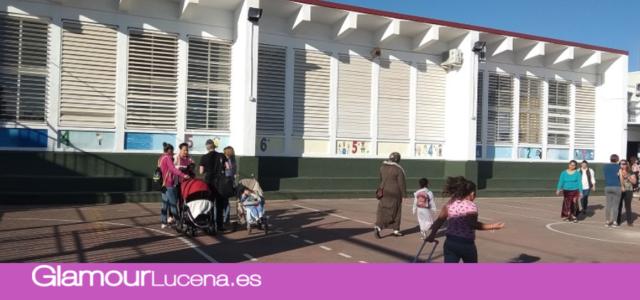 Licitadas las obras de la pista cubierta del CEIP San José de Calasanz con 181.253 euros