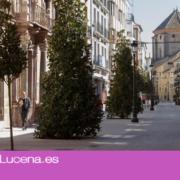 DESESCALADA: Novedades de la Fase 3 en Lucena