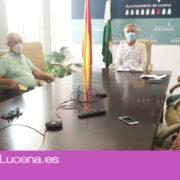 Comienzan los preparativos para una campaña de recogida de la aceituna marcada por las medidas anti-Covid