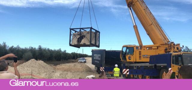 Una autorización especial de la Junta va a permitir continuar las obras en el Alfar Romano de Lucena