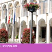 El Ayuntamiento encarga un informe sobre la problemática de las viviendas ocupadas